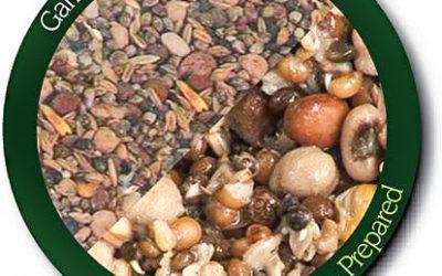 Pescuitul cu semințe la crap