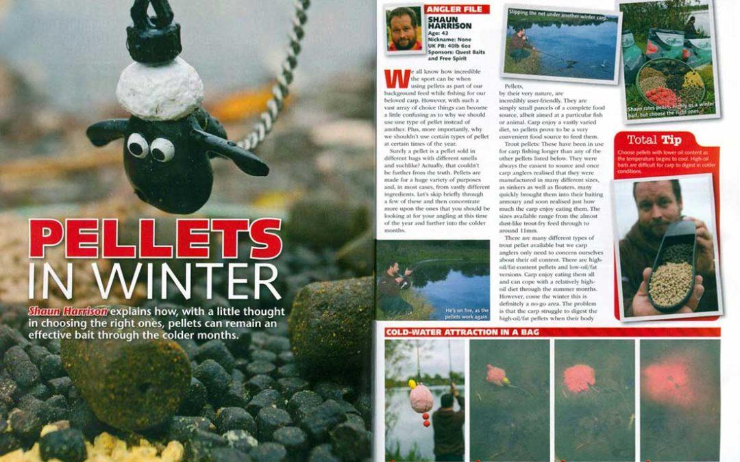 Pellets in winter