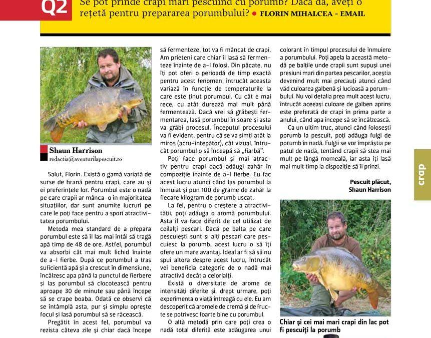 Crapi mari la porumb – Pregătirea porumbului pentru pescuit